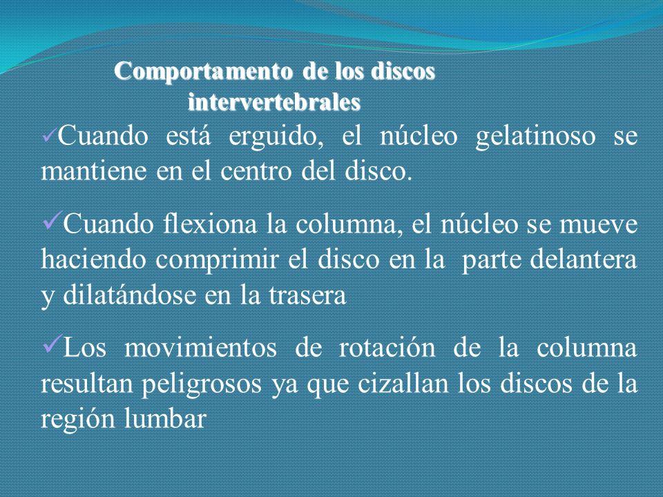 Comportamento de los discos intervertebrales