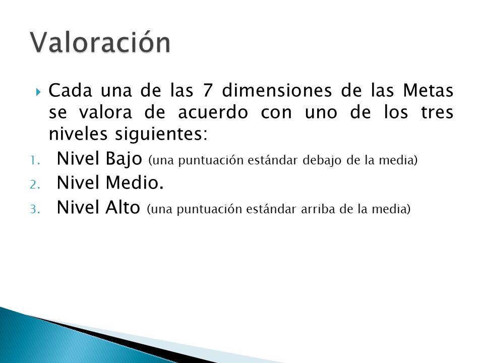 Valoración Cada una de las 7 dimensiones de las Metas se valora de acuerdo con uno de los tres niveles siguientes: