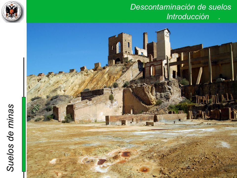 Suelos de minas Descontaminación de suelos . Introducción .