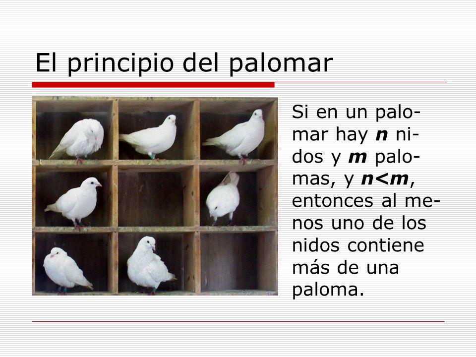 El principio del palomar