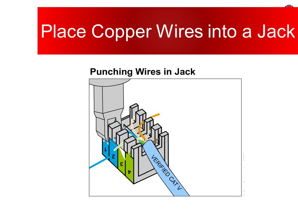 Place+Copper+Wires+into+a+Jack wiring harness design guidelines pdf wiring diagrams wire harness design guidelines at crackthecode.co
