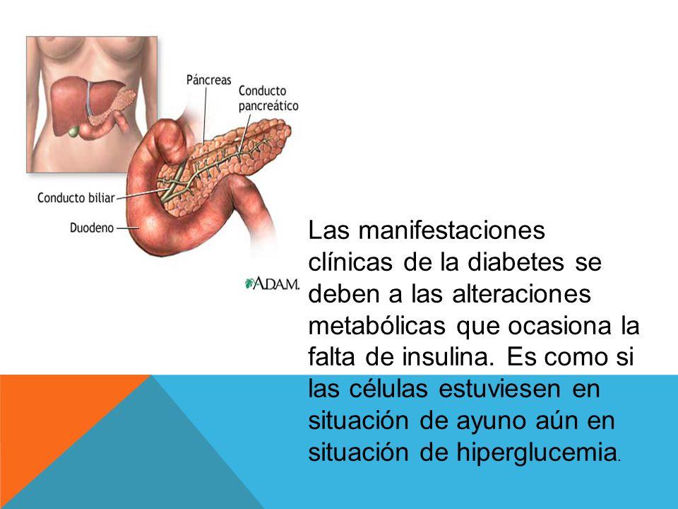 La diabetes es una enfermedad metabólica que se