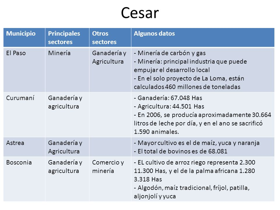 Cesar Municipio Principales sectores Otros sectores Algunos datos