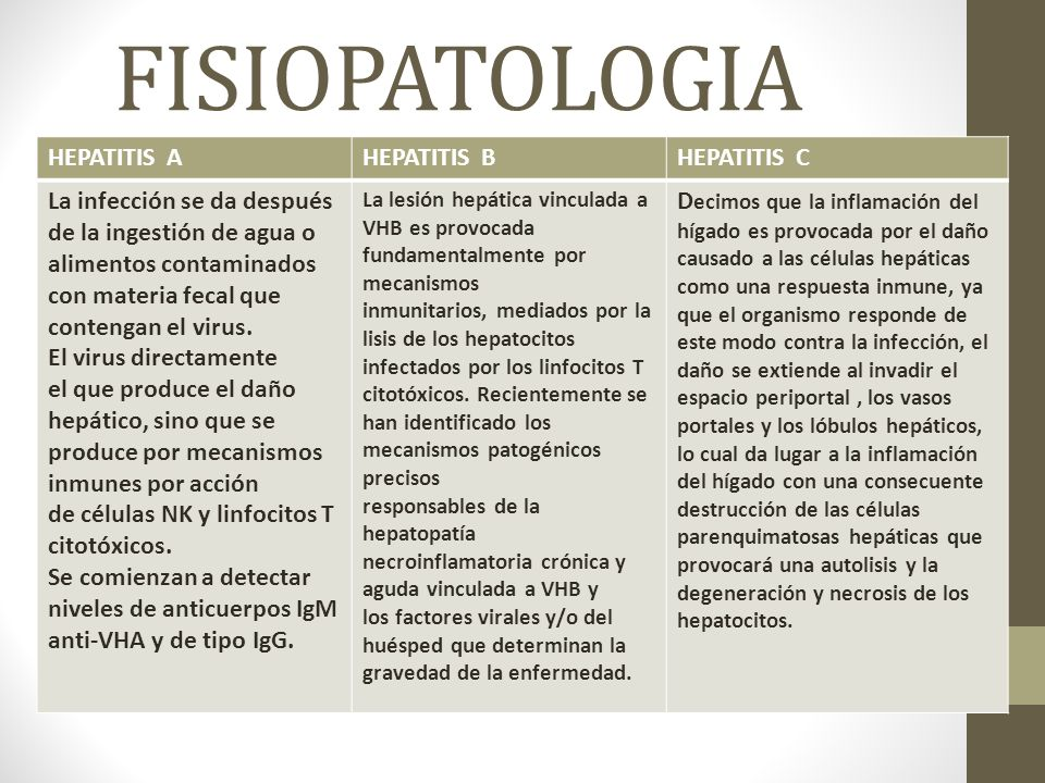 FISIOPATOLOGIA HEPATITIS A HEPATITIS B HEPATITIS C