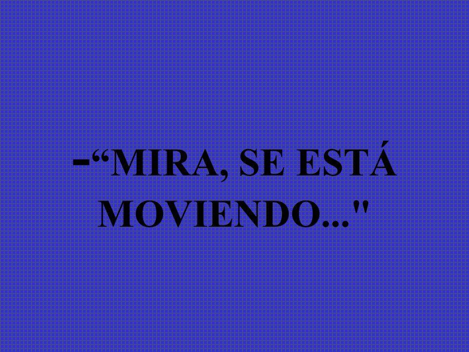 - MIRA, SE ESTÁ MOVIENDO...