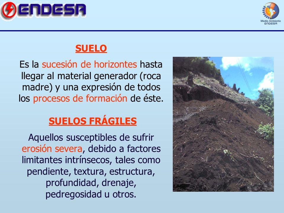 Erosi n de suelos centrales hidroel ctricas ppt video for Proceso de formacion del suelo
