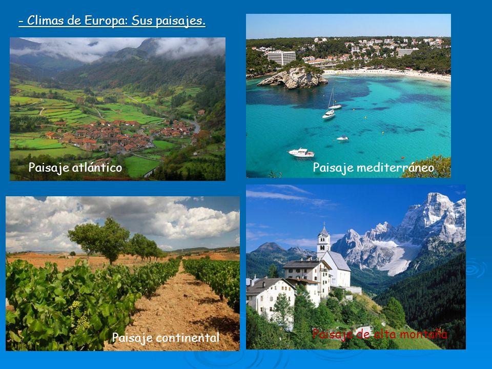 Fotos y paisajes diferentes tipos de clima pictures to pin on pinterest thepinsta - Tipos de paisajes ...