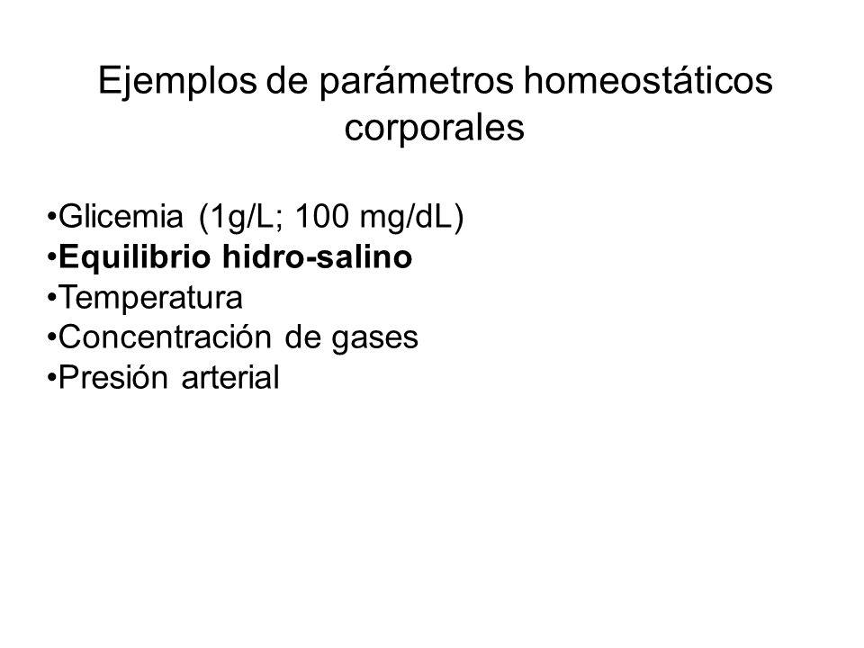 Ejemplos de parámetros homeostáticos corporales