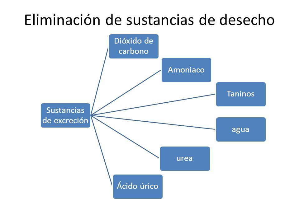 Eliminación de sustancias de desecho
