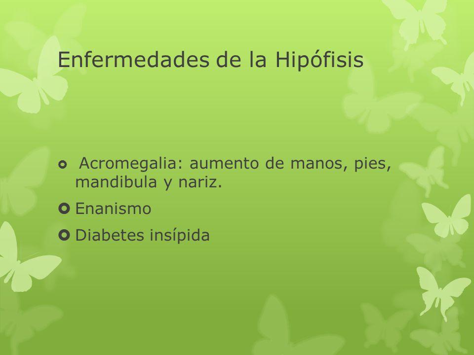 Enfermedades de la Hipófisis