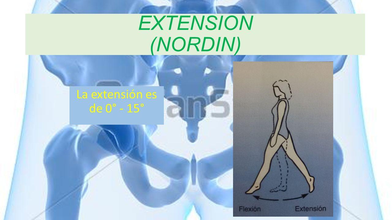 EXTENSION (NORDIN) La extensión es de 0° - 15°