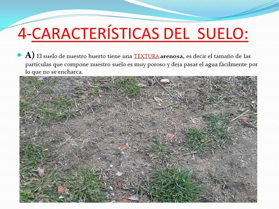 El suelo del huerto del instituto villablanca ppt video for Cuales son las caracteristicas del suelo