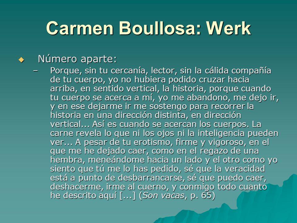 Carmen Boullosa: Werk Número aparte: