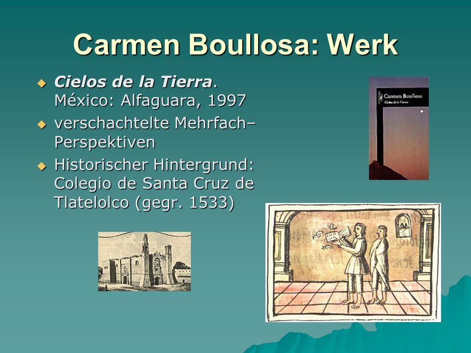 Carmen Boullosa: Werk Cielos de la Tierra. México: Alfaguara, 1997