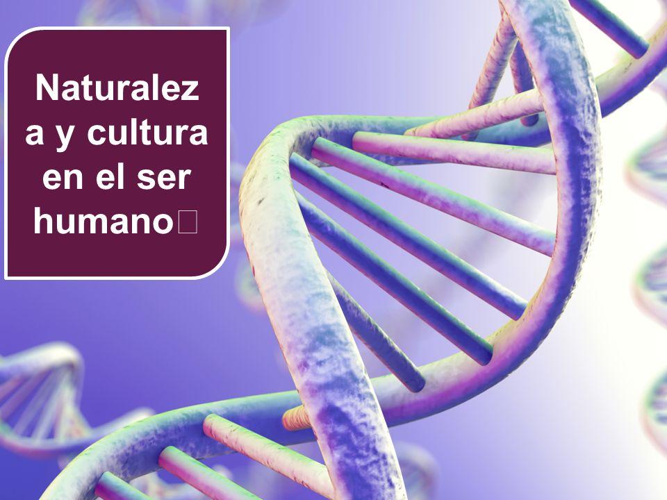 Naturaleza y cultura en el ser humano