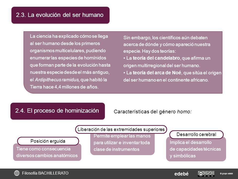 2.3. La evolución del ser humano