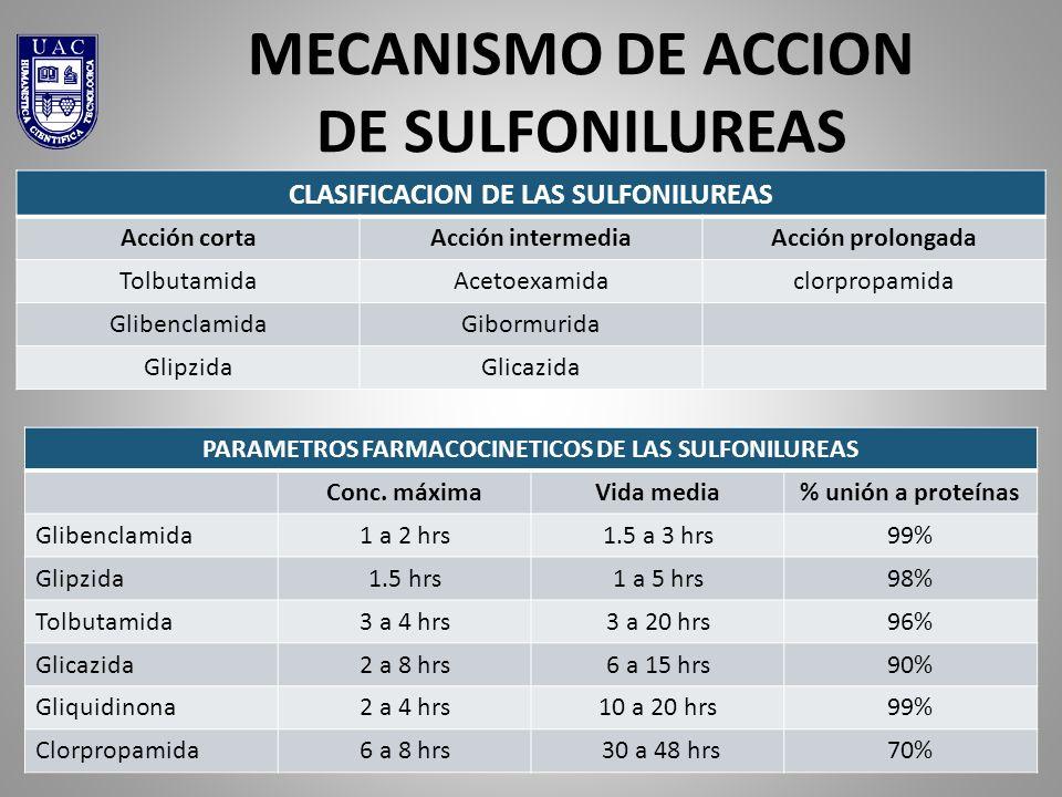 UNIVERSIDAD DE ACONCAGUA QF MARCELO VALENZUELA MIOCOVICH