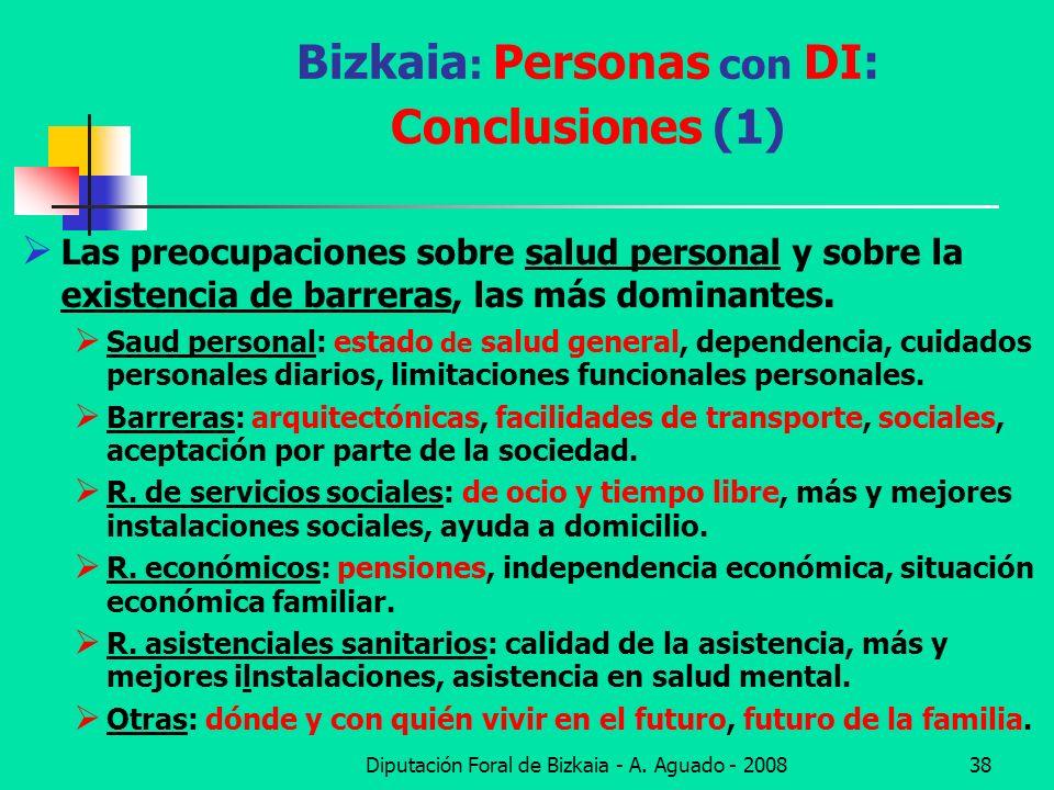 Bizkaia: Personas con DI: Conclusiones (1)