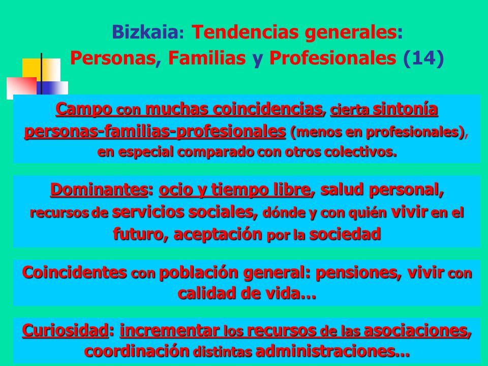 Bizkaia: Tendencias generales: Personas, Familias y Profesionales (14)