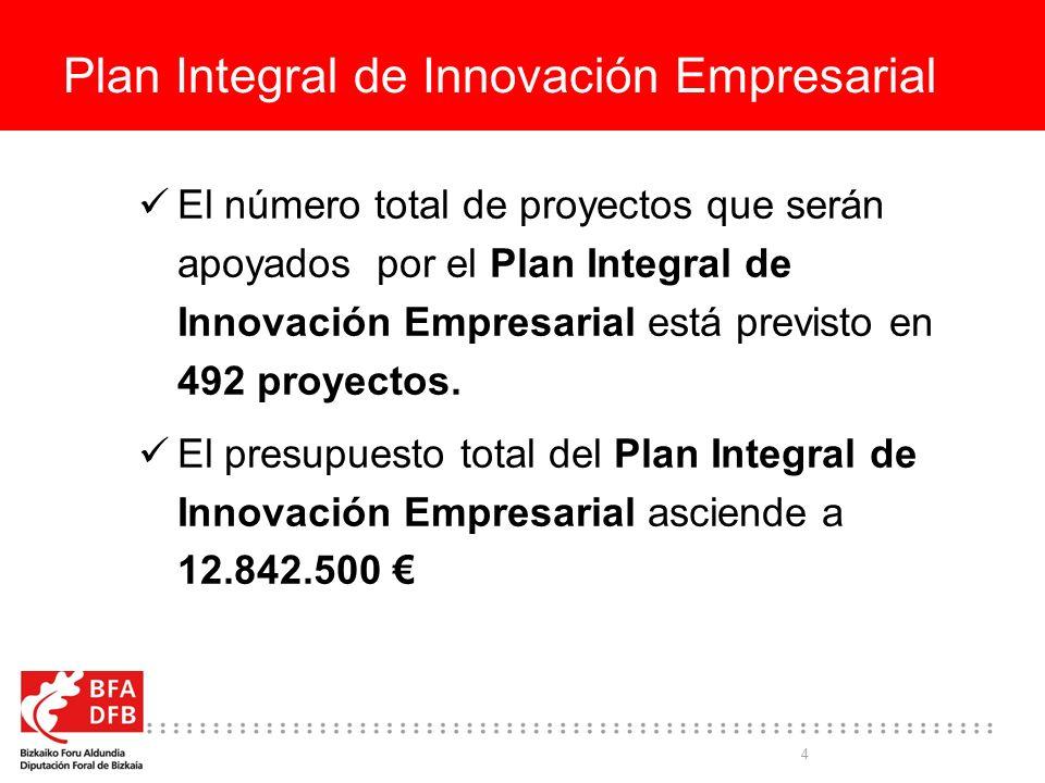 Plan Integral de Innovación Empresarial
