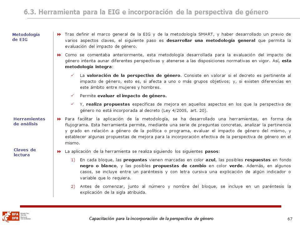 6.3. Herramienta para la EIG e incorporación de la perspectiva de género