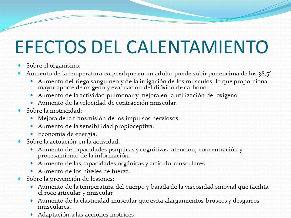 EFECTOS DEL CALENTAMIENTO