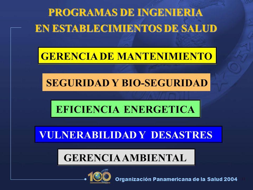 PROGRAMAS DE INGENIERIA