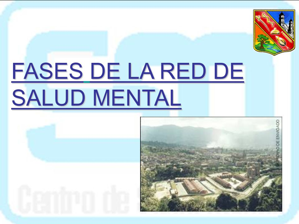 FASES DE LA RED DE SALUD MENTAL