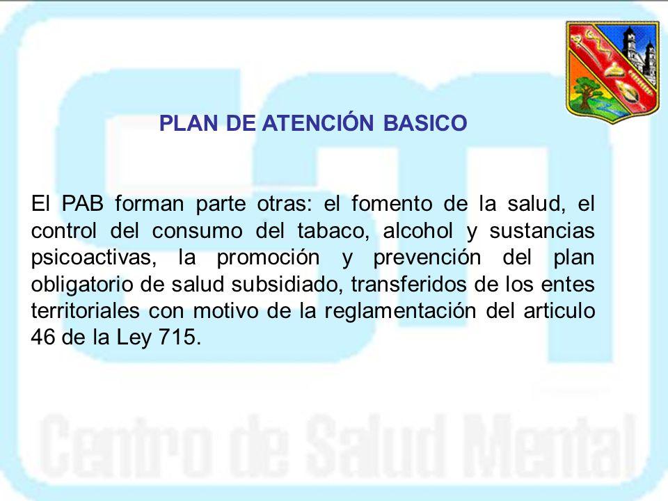 PLAN DE ATENCIÓN BASICO