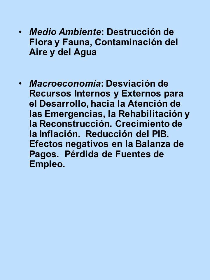 Medio Ambiente: Destrucción de Flora y Fauna, Contaminación del Aire y del Agua