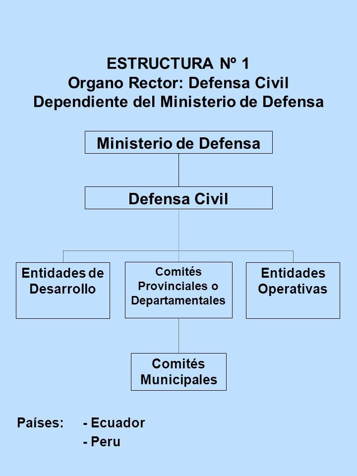 Entidades de Desarrollo Comités Provinciales o Departamentales