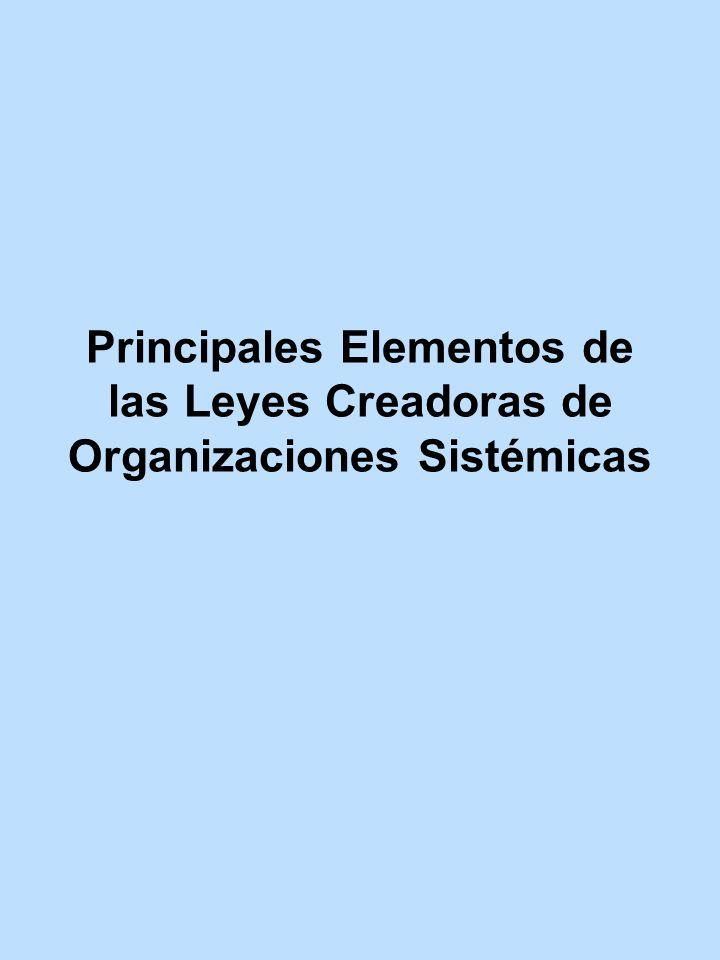 Principales Elementos de las Leyes Creadoras de Organizaciones Sistémicas