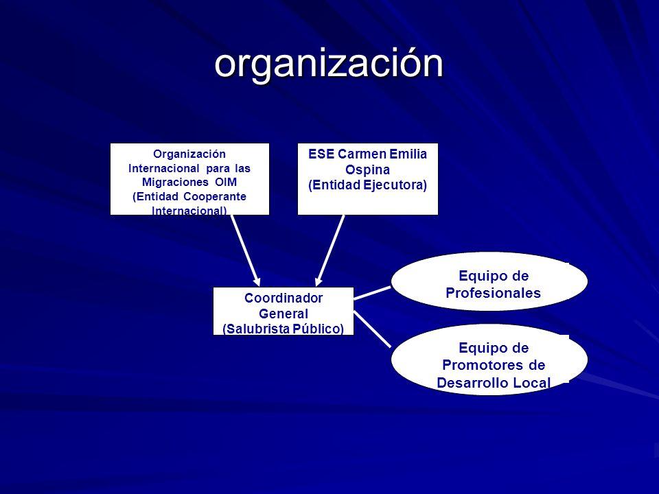 organización Equipo de Profesionales
