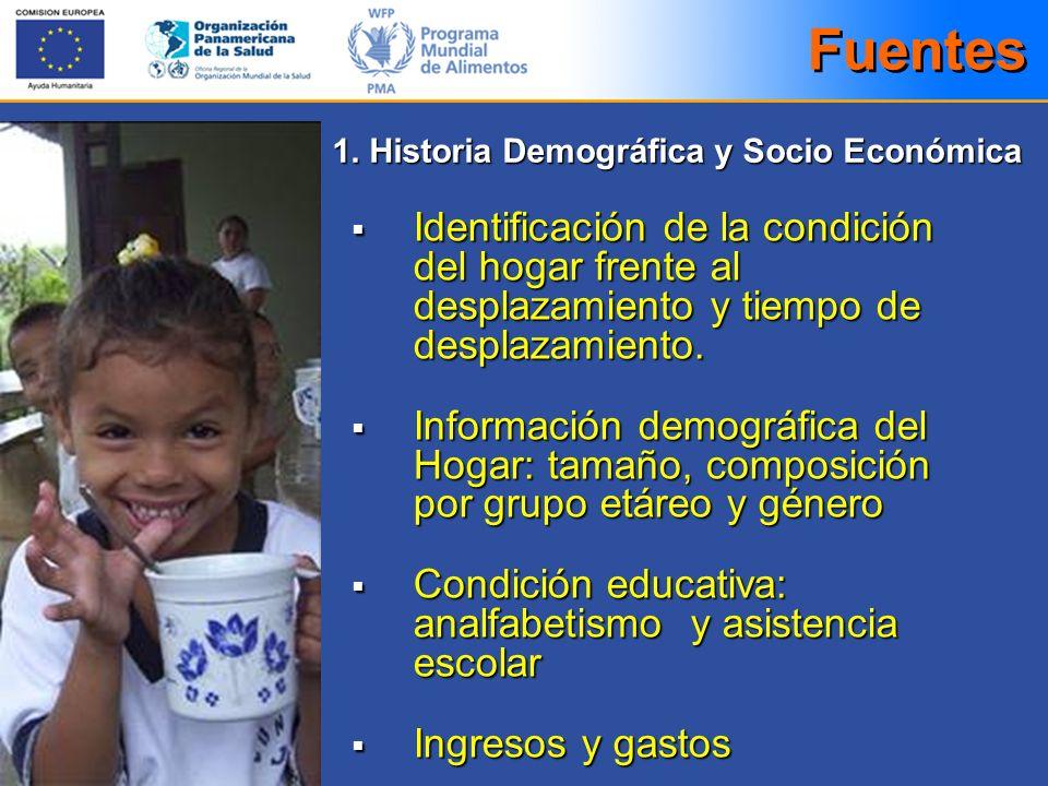 Fuentes 1. Historia Demográfica y Socio Económica. Identificación de la condición del hogar frente al desplazamiento y tiempo de desplazamiento.
