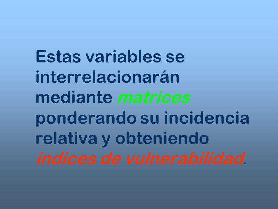 Estas variables se interrelacionarán mediante matrices ponderando su incidencia relativa y obteniendo índices de vulnerabilidad.