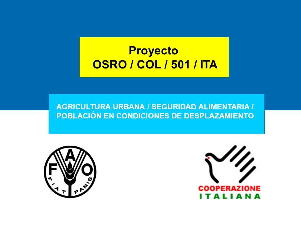 Proyecto OSRO / COL / 501 / ITA