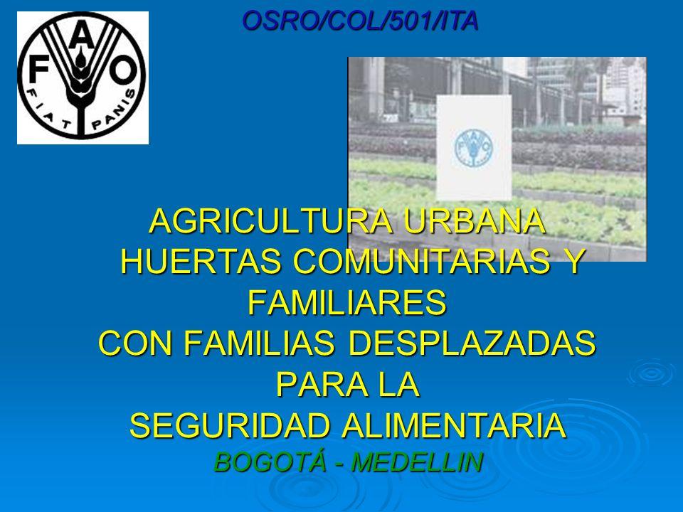 OSRO/COL/501/ITAAGRICULTURA URBANA HUERTAS COMUNITARIAS Y FAMILIARES CON FAMILIAS DESPLAZADAS PARA LA SEGURIDAD ALIMENTARIA BOGOTÁ - MEDELLIN.