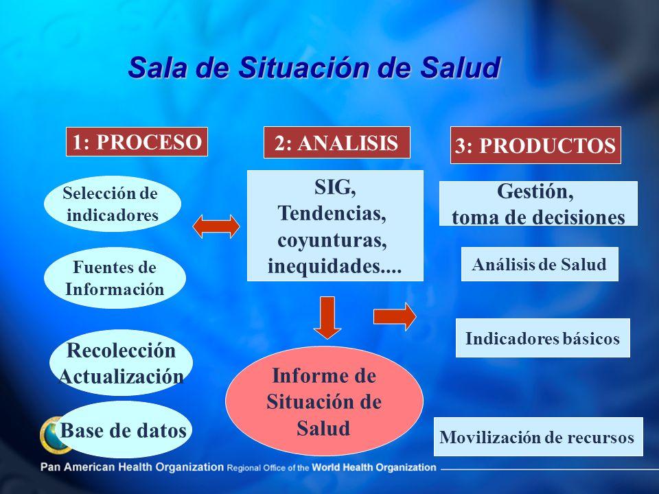 Informe de Situación de Salud Movilización de recursos