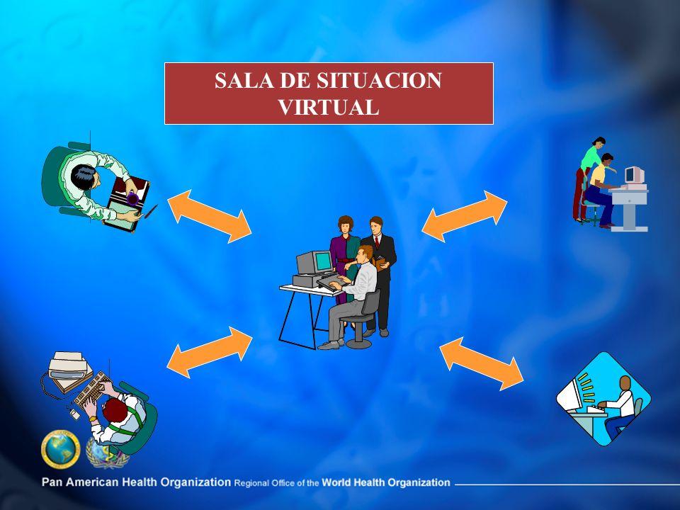 SALA DE SITUACION VIRTUAL