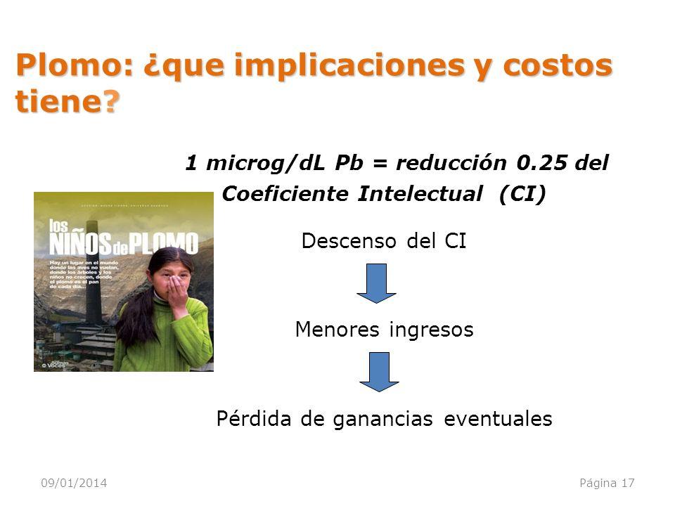 Plomo: ¿que implicaciones y costos tiene