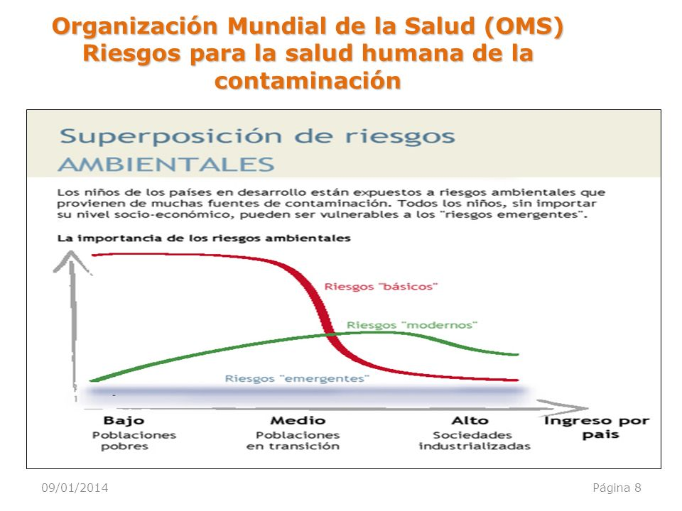 Organización Mundial de la Salud (OMS) Riesgos para la salud humana de la contaminación