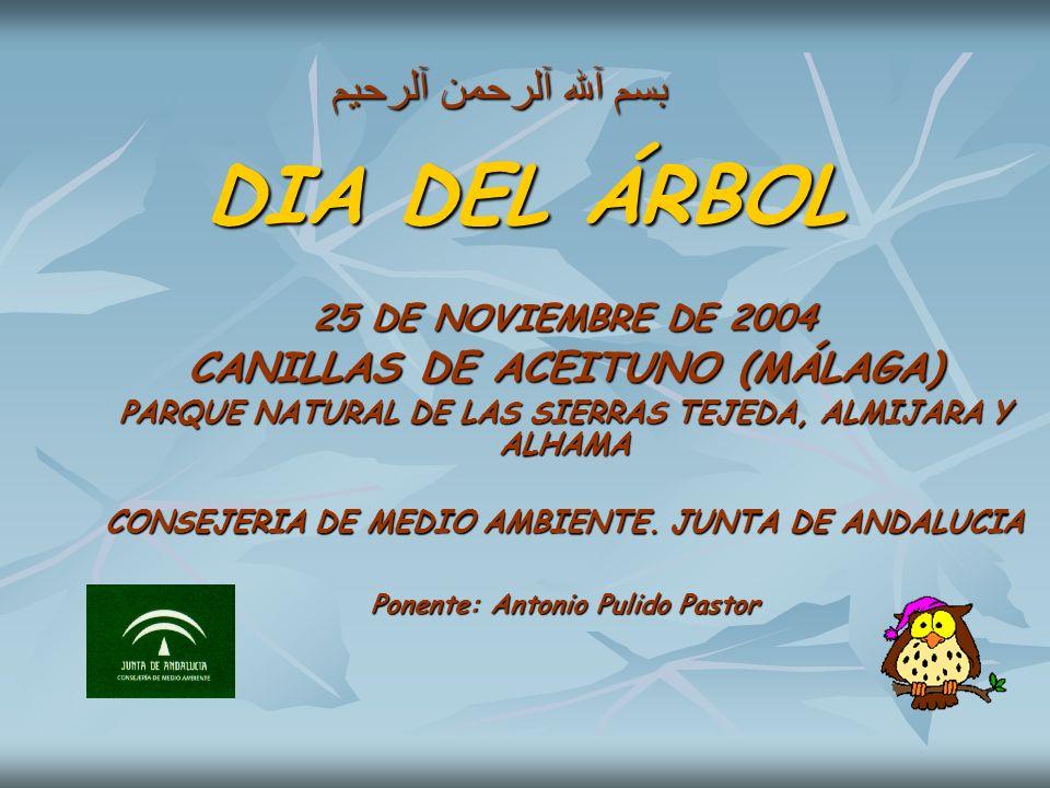 DIA DEL ÁRBOL بسم آلله آلرحمن آلرحيم CANILLAS DE ACEITUNO (MÁLAGA)