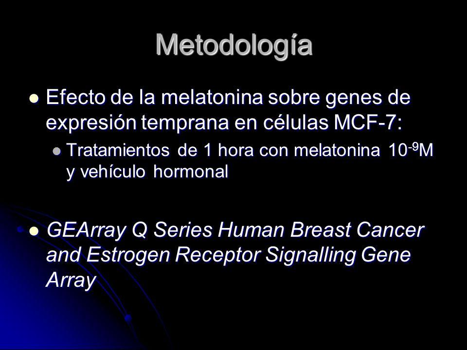 MetodologíaEfecto de la melatonina sobre genes de expresión temprana en células MCF-7: