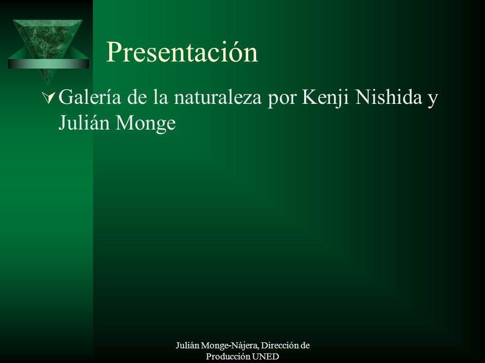 Julián Monge-Nájera, Dirección de Producción UNED