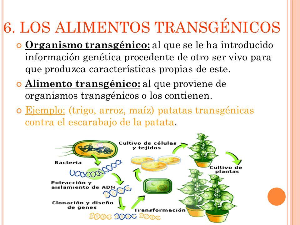 6. LOS ALIMENTOS TRANSGÉNICOS