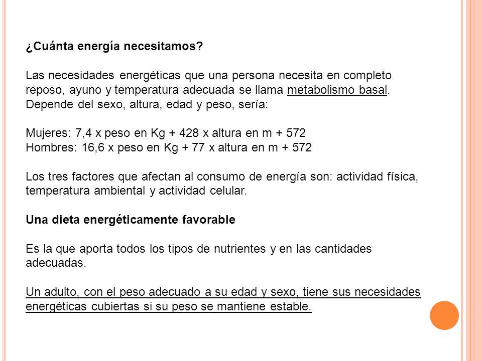 ¿Cuánta energía necesitamos