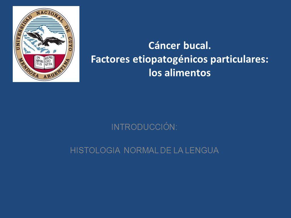 Cáncer bucal. Factores etiopatogénicos particulares: los alimentos