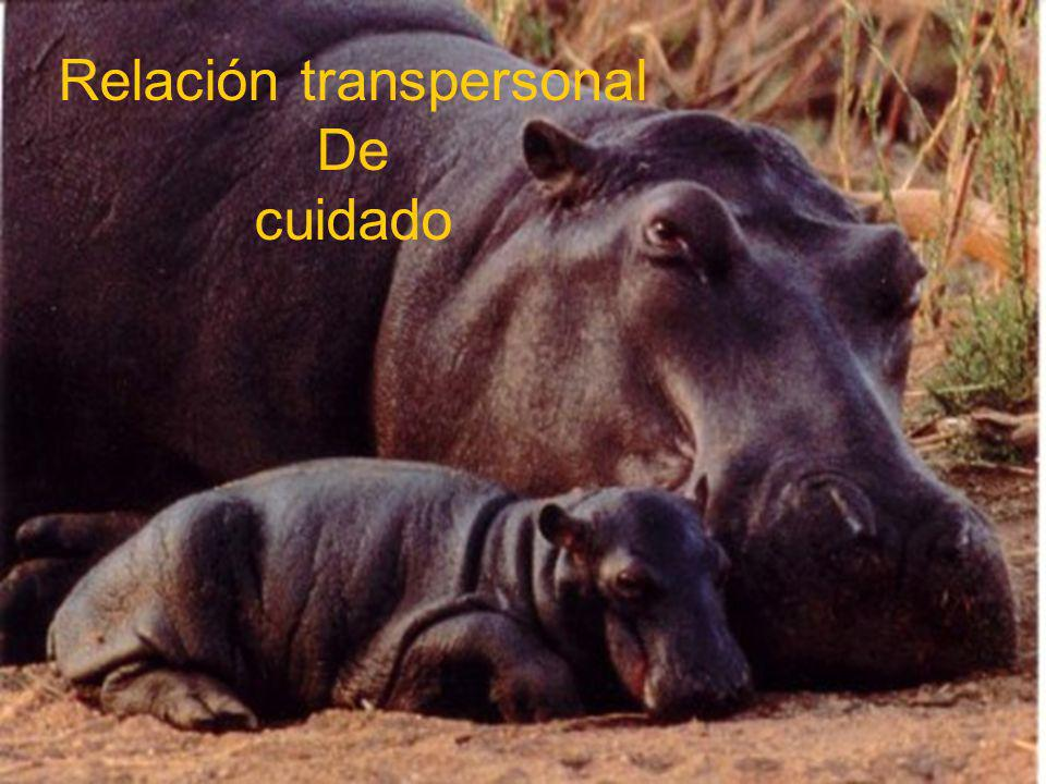Relación transpersonal