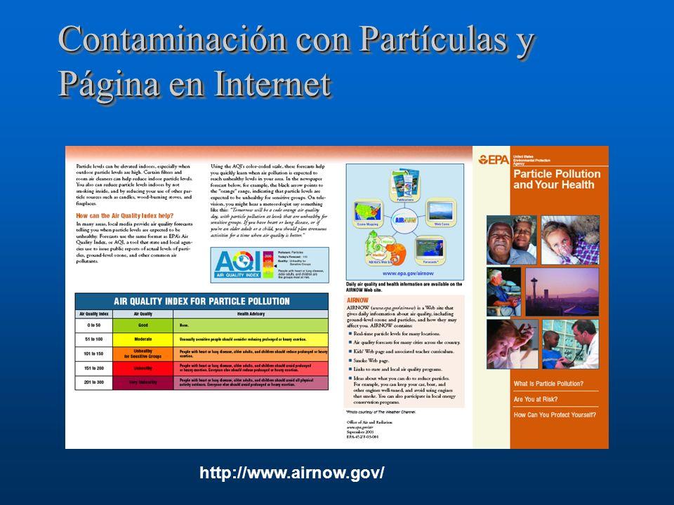 Contaminación con Partículas y Página en Internet