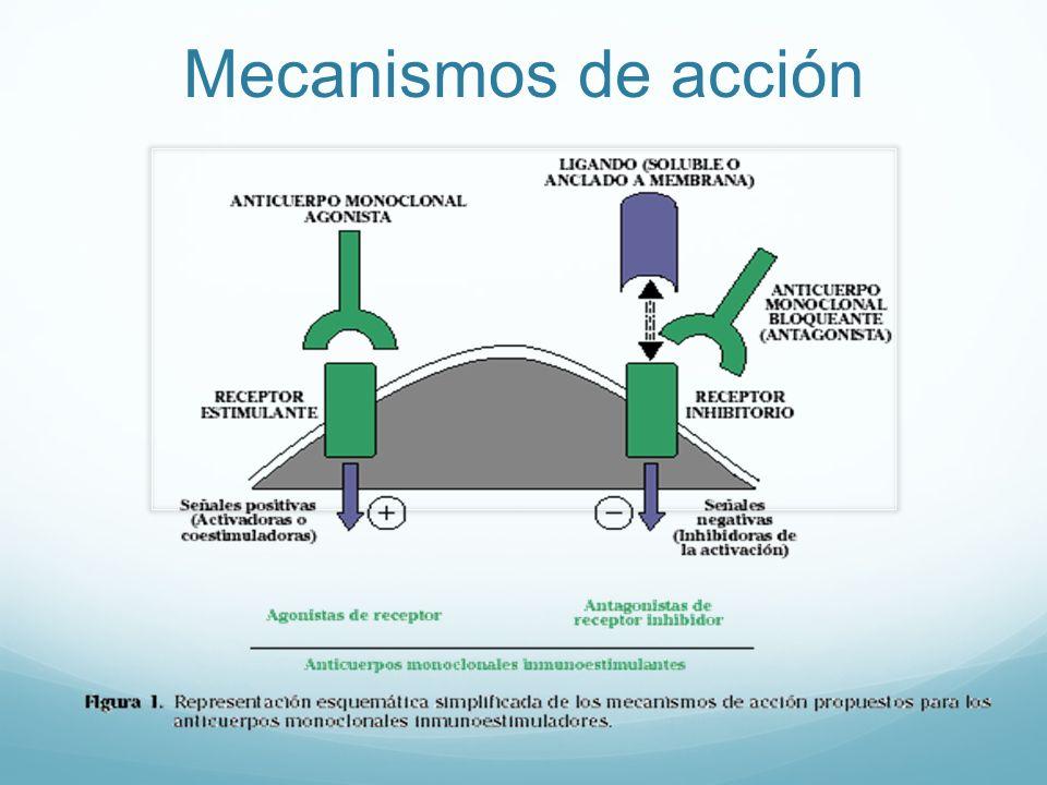 Anorexigenos mecanismo de accion